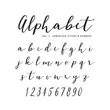 Hand Drawn Vector Alphabet. Sc...