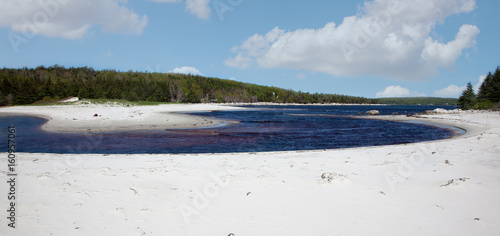 Foto op Plexiglas Caraïben white beach with winding river and blue sky with clouds