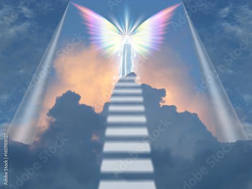 Obraz na płótnie Angel