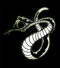 Spitting Venom Black And White...