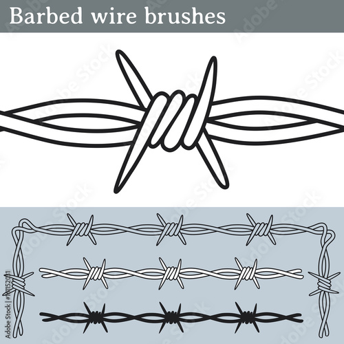 Barbed wire brushes Wallpaper Mural
