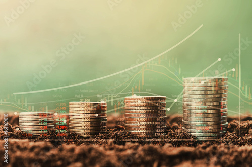 Fototapeta stack of coin growth money and tree, concept  Data chart of finance indices on nature background obraz