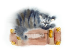 The Cat Sleeps On A Suitcase. ...