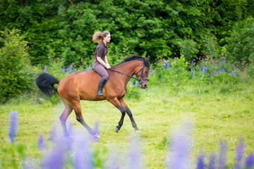 Riding horses in the woods