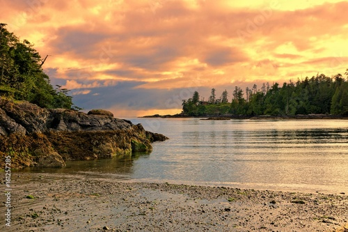 Foto op Plexiglas Kust Sunset along the coast of Pacific Rim National Park, Vancouver Island, BC, Canada
