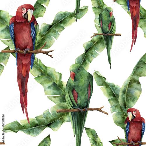 akwarela-bezszwowe-wzor-z-papugi-i-lisci-palmowych-bananowca-recznie-malowane
