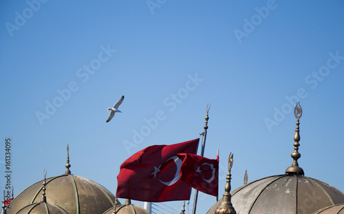 Photo Stands Shanghai Turkish national flag and domes in view