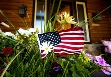 American Flag With White Flower