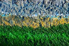 Algae On The Quay Background