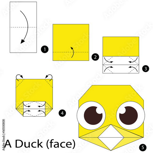 Step By Step Instructions How To Make Origami A Wild Duck. Stock ... | 500x500
