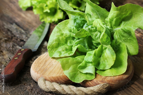 Raw green organic butter lettuce ready to chop on cutting board with knife