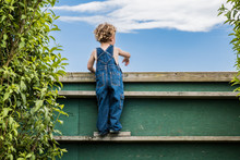 A Young Boy With Blonde Curls And Blue Overalls Is Looking Over A Green Wooden Fence. The Boy Is Curious Or Looking For His Friends Or The Neighbors. The Boy Is Young, Around Preschool Age. Summer