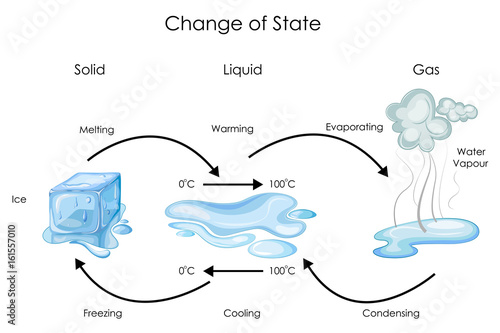Valokuva  Education Chart of Biology for Change of State for Water Diagram