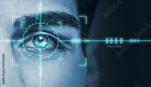 Cuadros en Lienzo  biometric hi tech security retina scan