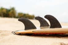 Close Up View Of A Carbon Fiber Fins On A Design Wooden Surf Shortboard Surfboard Board At Sunrise Or Sunset On Sand Beach With Palm Tree. Vacation Concept. Summer Holidays. Tourism, Sport.