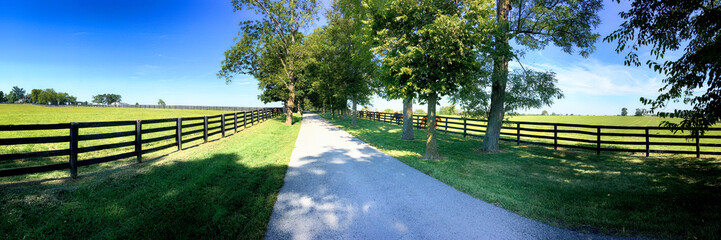 Horse farms just outside Lexington KY, Known as the