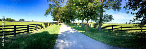 Fotomural Horse farms just outside Lexington KY, Known as the  Horse Capital of the World