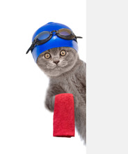Cat With Swimming Hat And Glas...