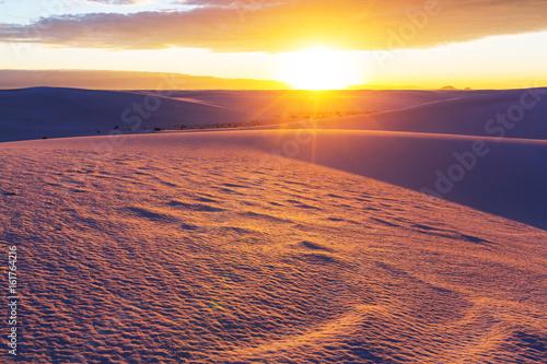 Foto op Plexiglas Koraal White desert