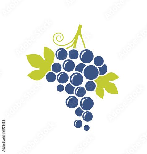 Foto  Blue grape