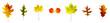 Leinwandbild Motiv verschiedenfarbige Blätter liegen nebeneinander auf weißem Hintergrund