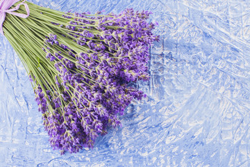 Fototapeta bunch of lavender