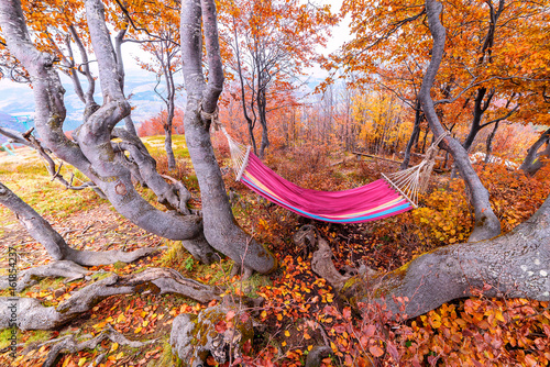 In de dag Oranje eclat colored hammock, autumn