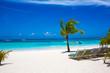 Sunbed on topical beach ,Beach chairs on sand