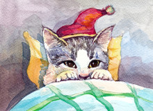 Christmas Cat In Bed