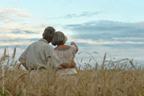 Fotografia  Senior couple on field of wheat