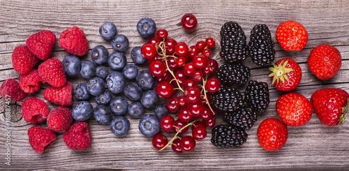 Poster Vruchten frutti di bosco,still life