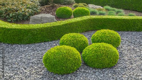 Foto op Canvas Tuin Kleiner Ziergarten mit kugelförmig geschnittenen Büschen Felsen und Hecke - Small ornamental garden with spherical shaped globular bushes and hedges
