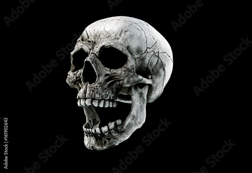 Human Scary Skull Locally Deformed in Rich colors in to the White or Dark Background Slika na platnu