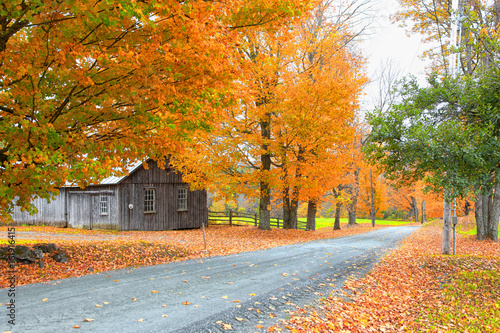 plakat Scenic rural Vermont landscape in autumn time