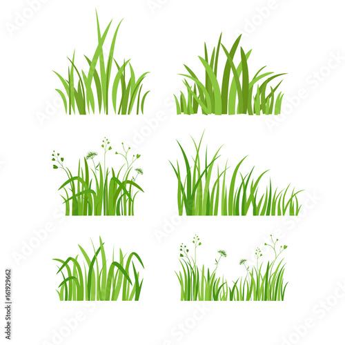 Green grass set Wall mural