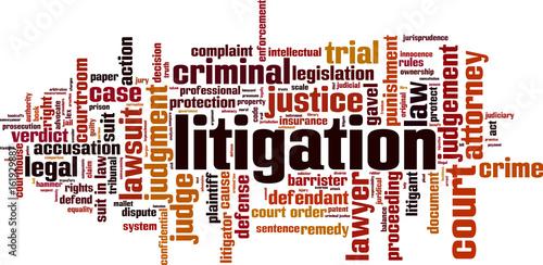 Photo  Litigation word cloud