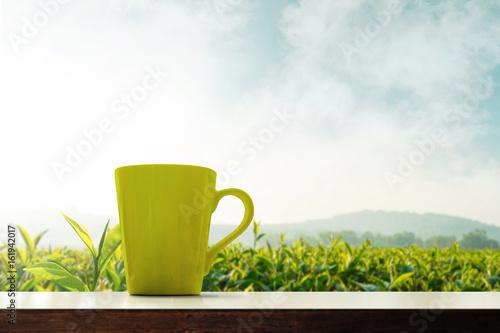 Fototapeta Matcha green tea cup present over plantation organic farm, Morning scene and fog
