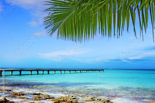 Foto op Plexiglas Caraïben Caribbean sea and palm leaves.