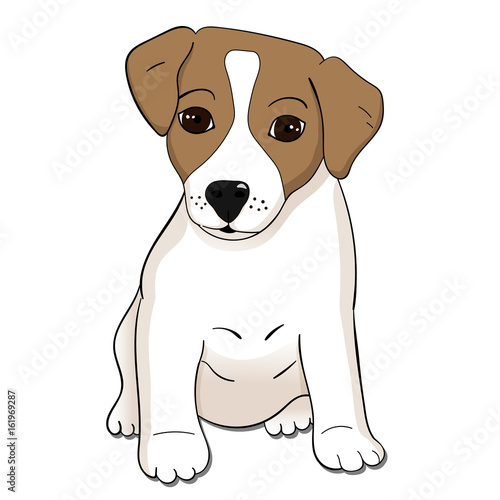Obraz Cute Jack Russel terrier puppy. Vector illustration. - fototapety do salonu