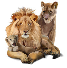 Lion Pride Watercolor Painting