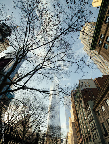 One World Trade Center and surrounding buildings viewed through tree branches be Canvas Print