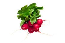 Radish Vegetable Isolated On W...