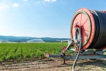 Agricultural Hose Reel Of A Irrigation System With Sprinkler In The Background
