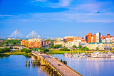 Fototapeta Sawanna - Charleston, South Carolina, USA
