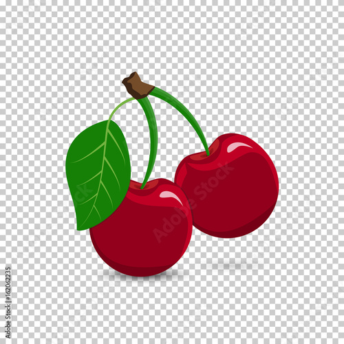 Valokuva Red cherry on a transparent background