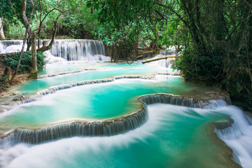 FototapetaKuang si water fall in Luang prabang, Laos.