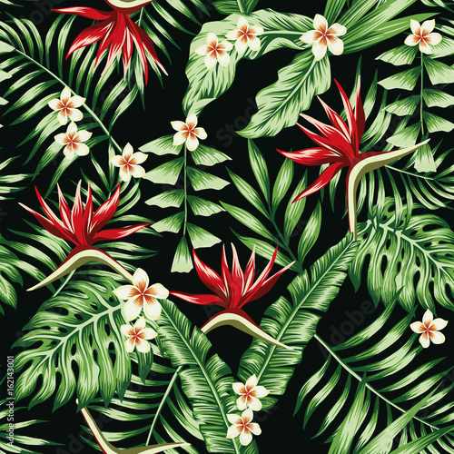 tropikalne-rosliny-i-kwiaty-bezszwowe-czarne-tlo