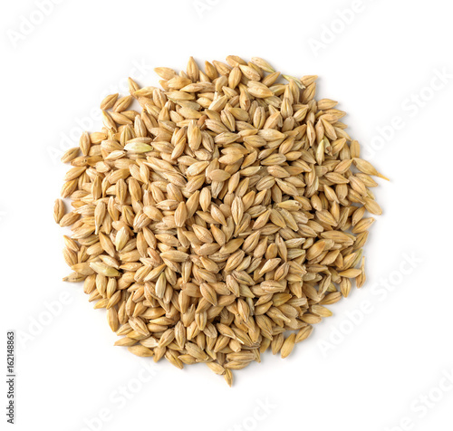 Top view of barley grains