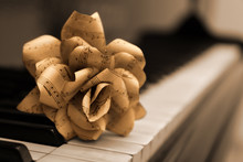 Rose Made Of Music Notes On Piano Keys