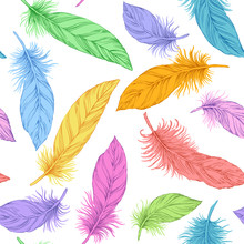 Seamless Bright Colour Feather Pattern